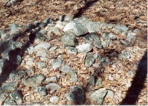 Gungywamp - On Ground Cairn