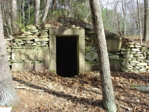 Root Cellar-Thompson-1-Small